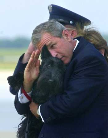 Dubya Bush saluting for the dog
